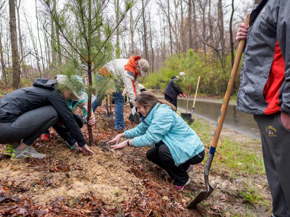 Dozens Plant Trees Along Greenway for Community Tree Day